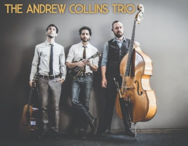Andrew Collins Trio