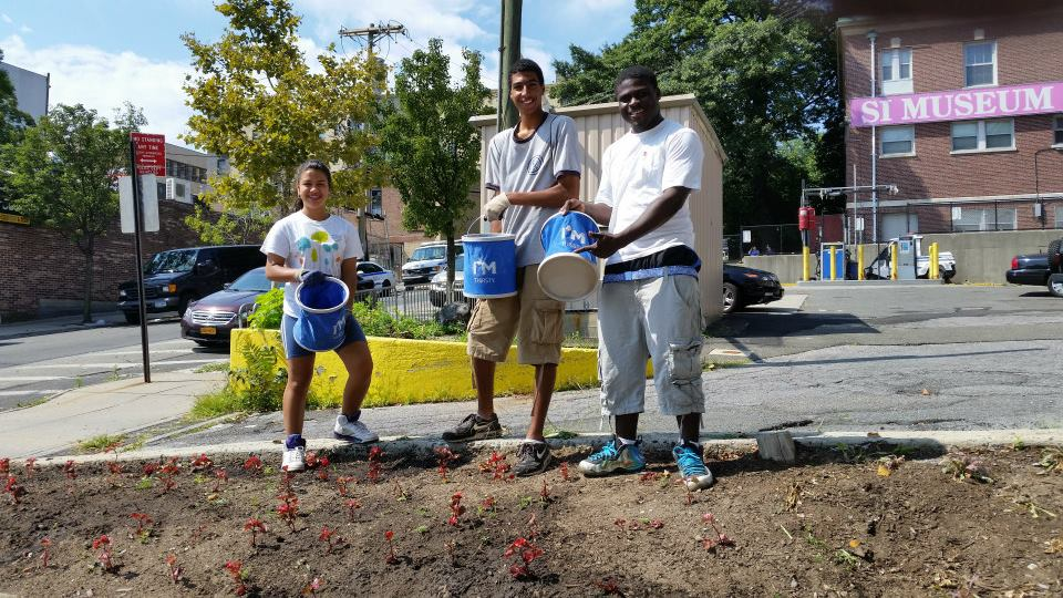 MillionTrees and HEALTH for Youths Stewardship Program