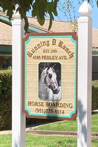 """P25072- Carved HDU Sign for """"Running D Ranch"""" Featuring a Horse in Frontal Face View, Aritst-Painted"""