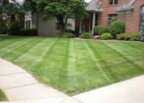 Schlosser Enterprises Lawn Aerating Fremont Omaha Ne