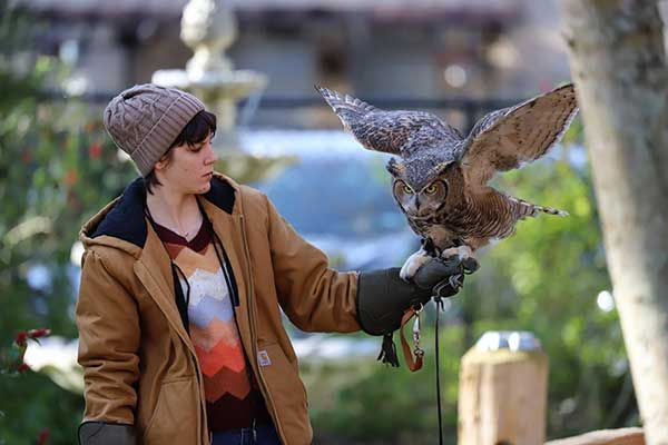 Behind the Scenes at the Raptor Center