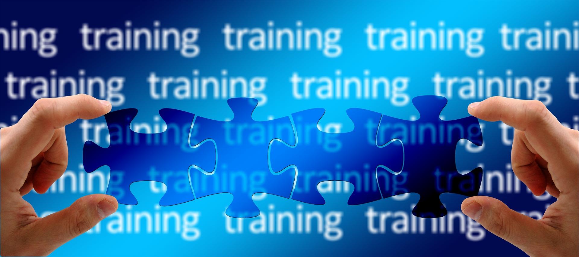 Lincoln Pre-Service Training