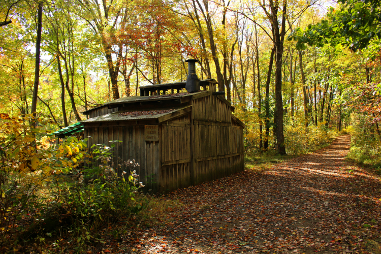 Maple Sugar Shack Fall