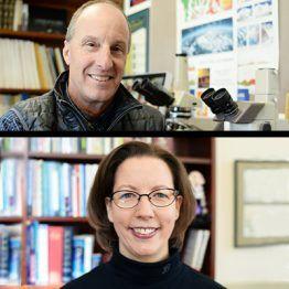 UMW 2020 Regents Teaching Scholars Announced
