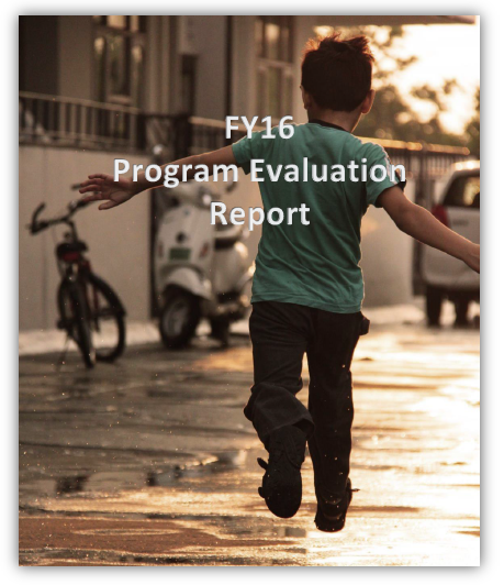 Fiscal Year 2016 Program Evaluation Report