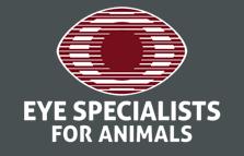 Eye Specialists