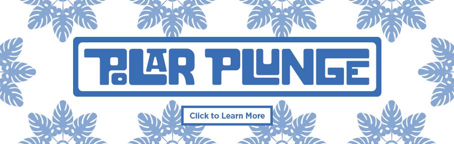 Polar Plunge 2019