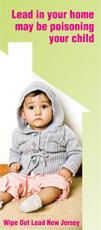 Wipe Out Lead - Home Dust Kit Brochure
