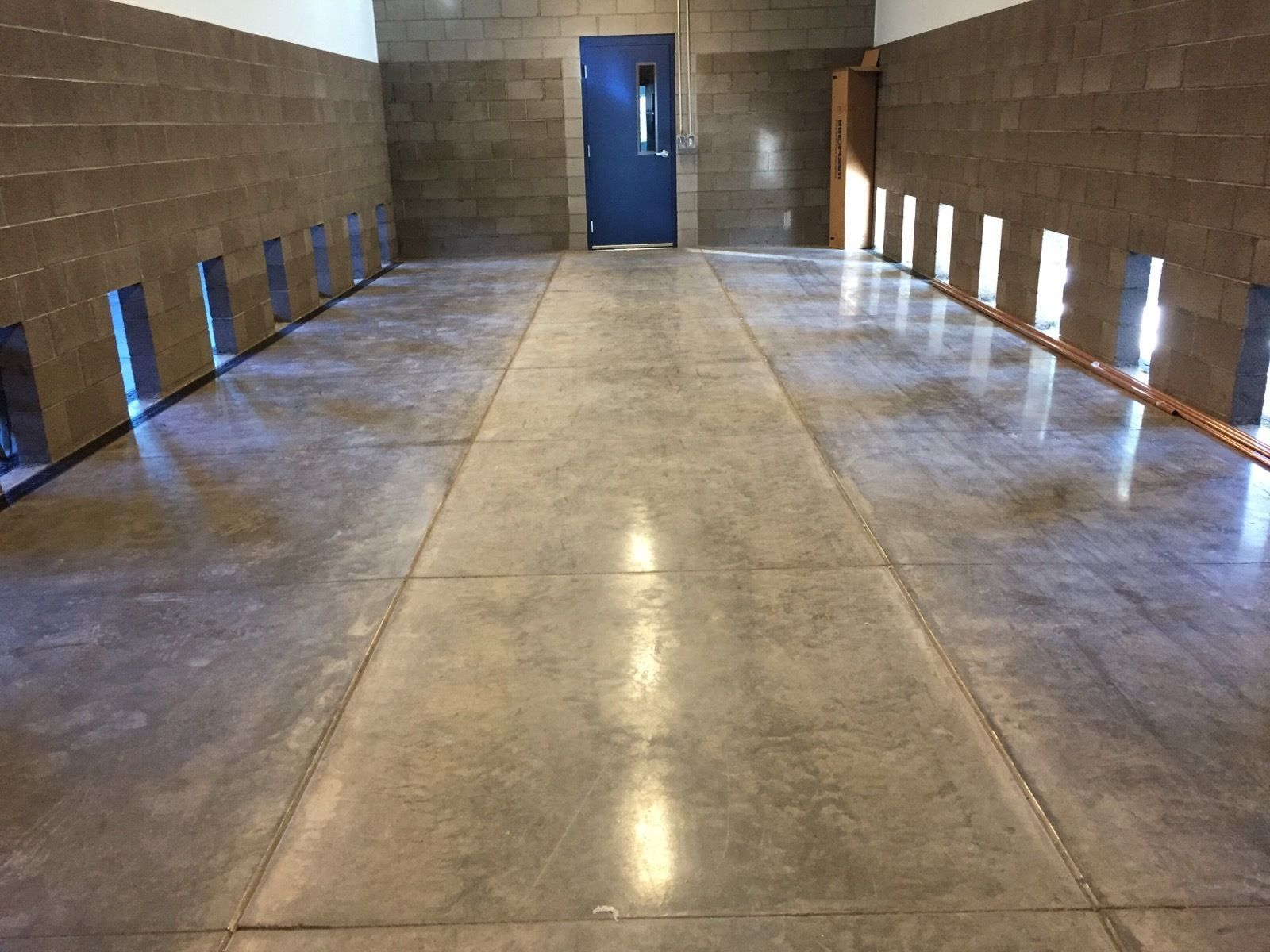Kennels before Dividers