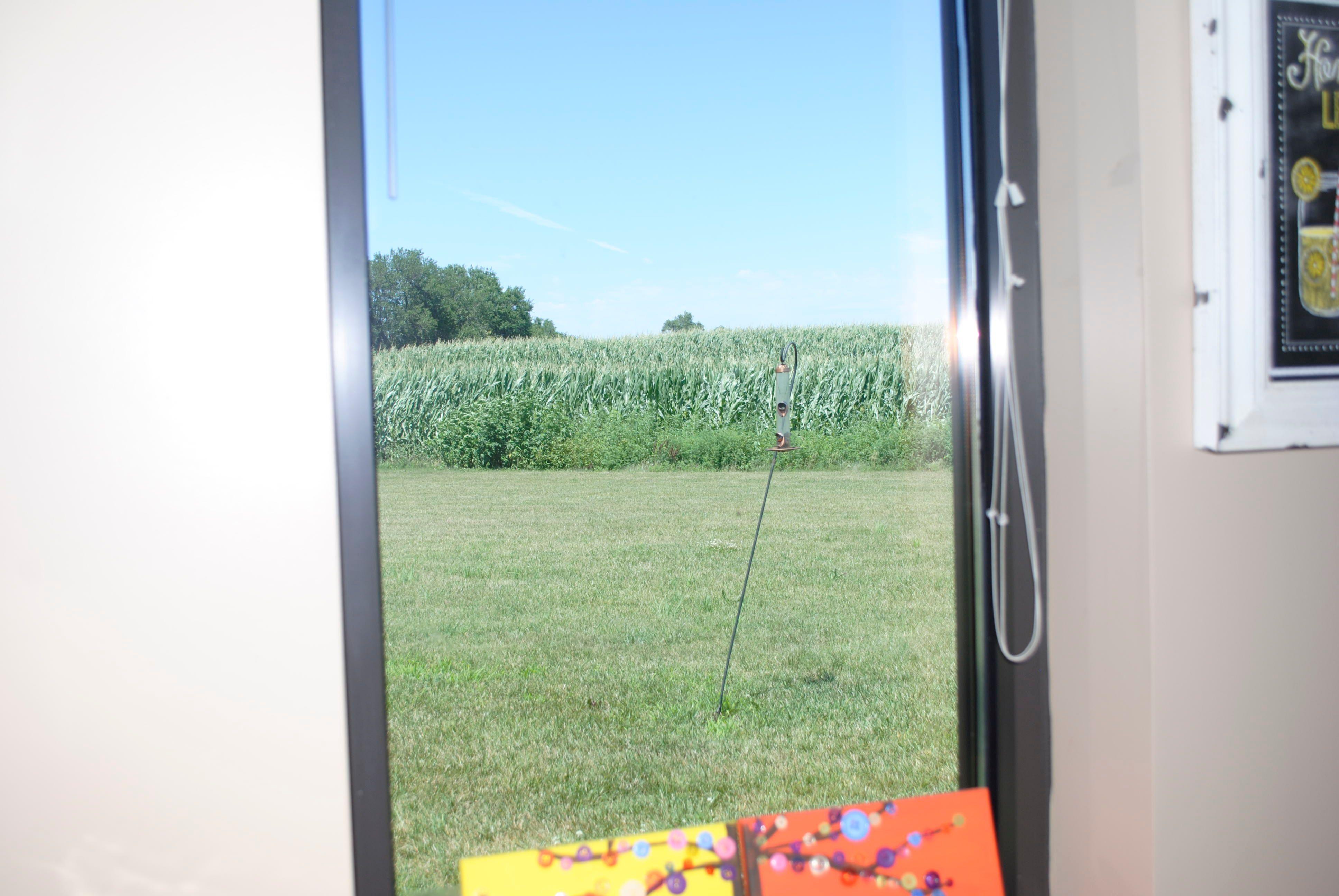 My Window View | Crops