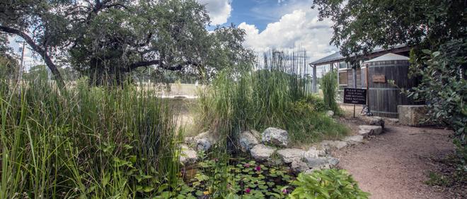 Cibolo Tx Nature Center