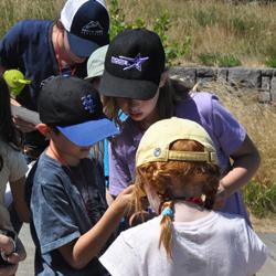 Volcano Outdoor School