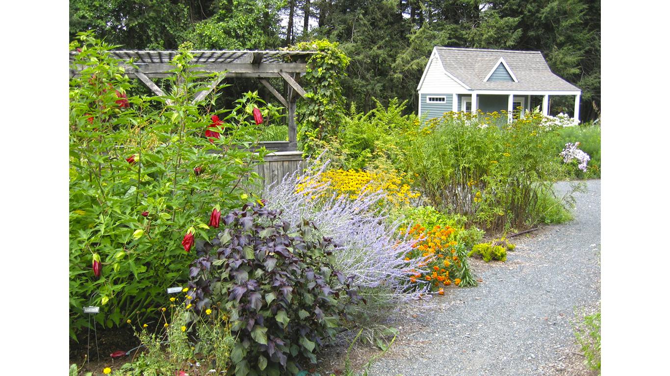 New England Unit Dye Garden