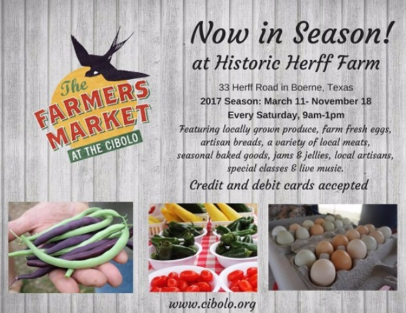 FARM: Farmer's Market at the Cibolo