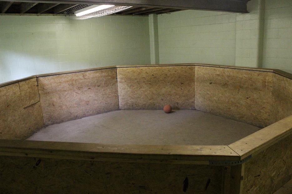 Indoor Gaga Pit