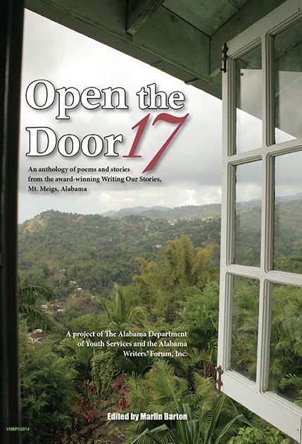 OPEN THE DOOR 17