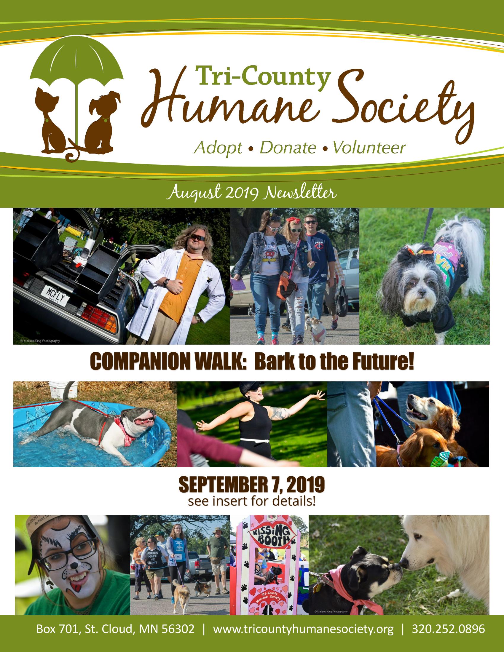 Newsletter - August 2019 (.pdf download)