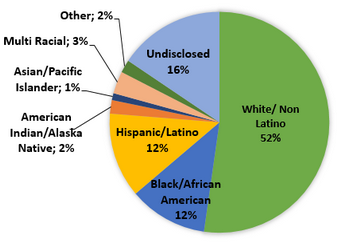 Race or Ethnicity