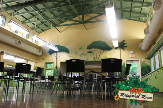 The rainforest room is a facility rental that can be used for many different purposes.