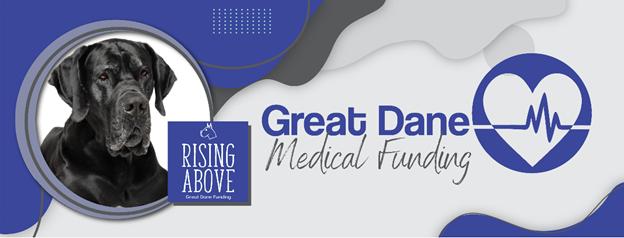 Rising Above Great Dane Funding | Facebook