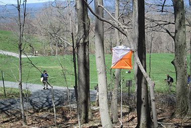 Orienteering: Creating Your Own Path