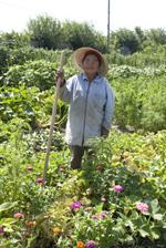 Ray Nay Paw on farm