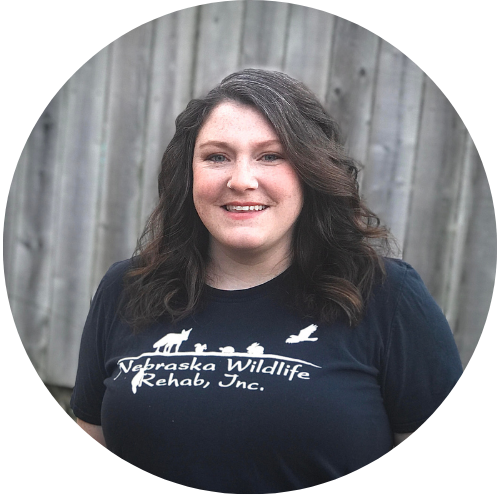 Lauren Darnold - Education and Public Outreach Coordinator