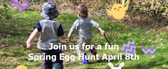 Egg Hunt Spotlight