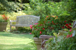 """Gardening 101 for Busy People:  Spring Landscape Seminar"""