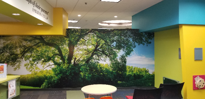 Wall Murals for Libraries in Chandler AZ