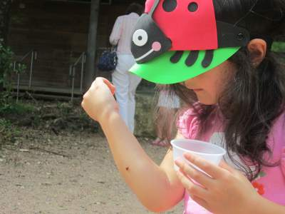 Discovering nature (lady bug)
