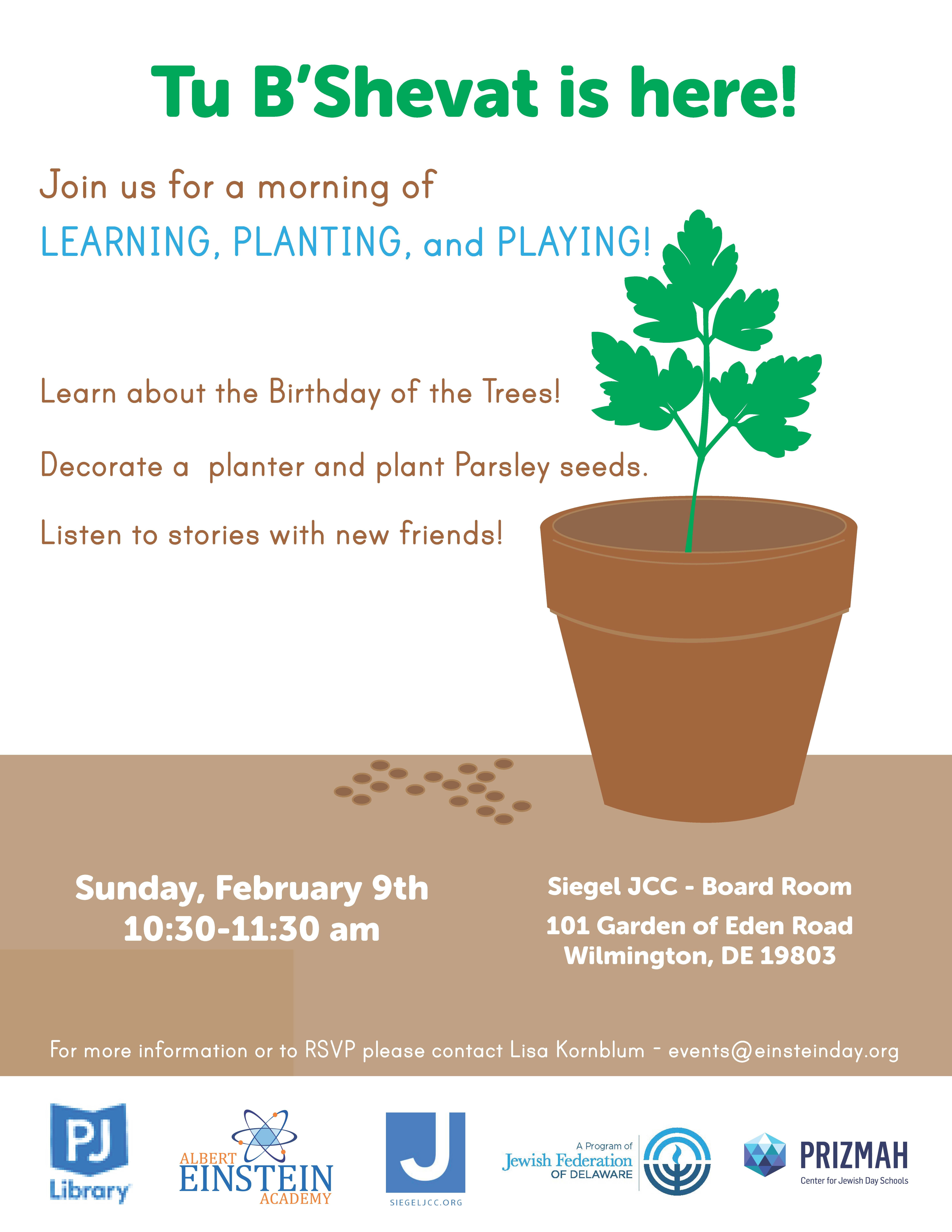 Tu B'Shvat Parsley Planting