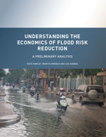 Understanding the Economics of Flood Risk Reduction: A Preliminary Analysis