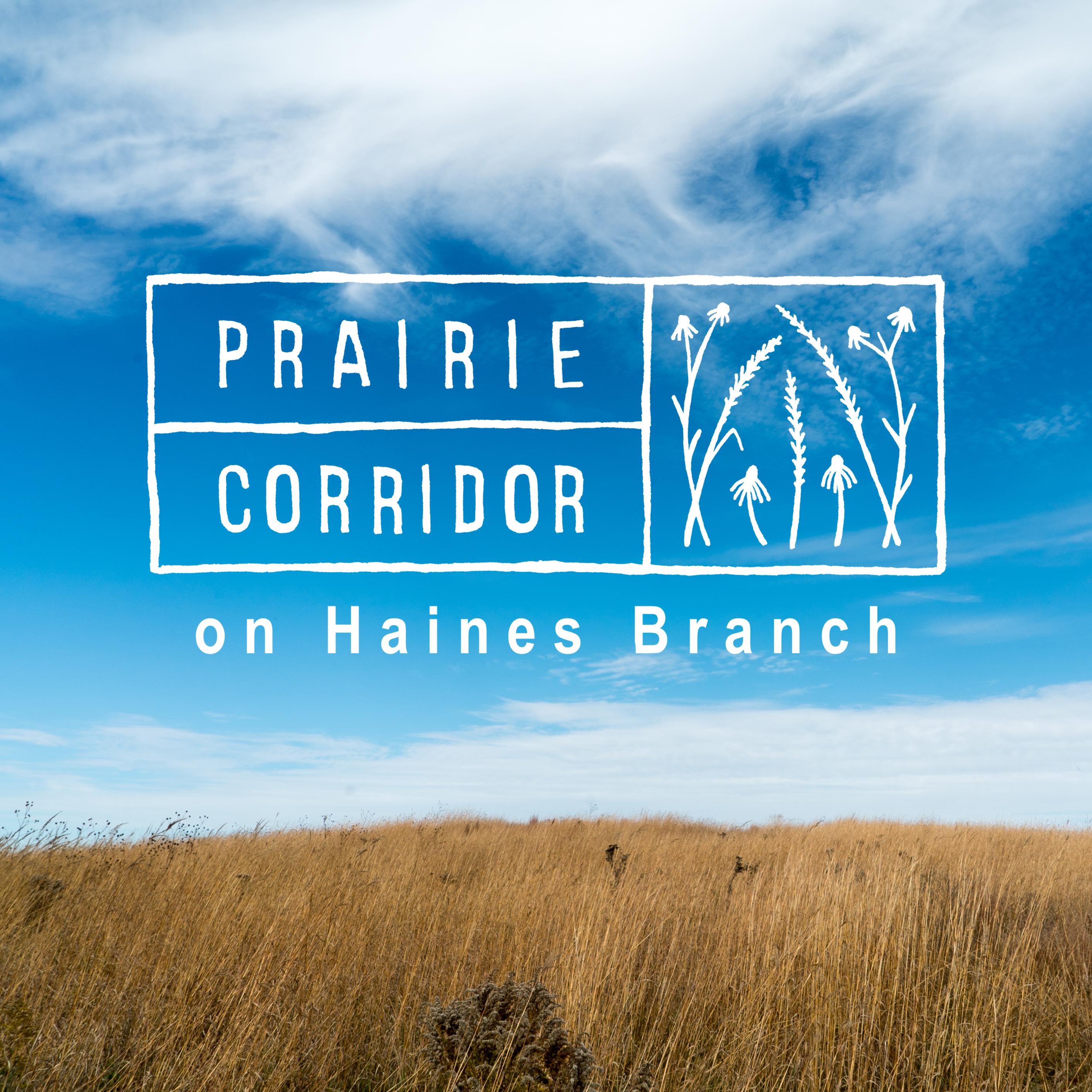 Haines Branch Prairie Corridor