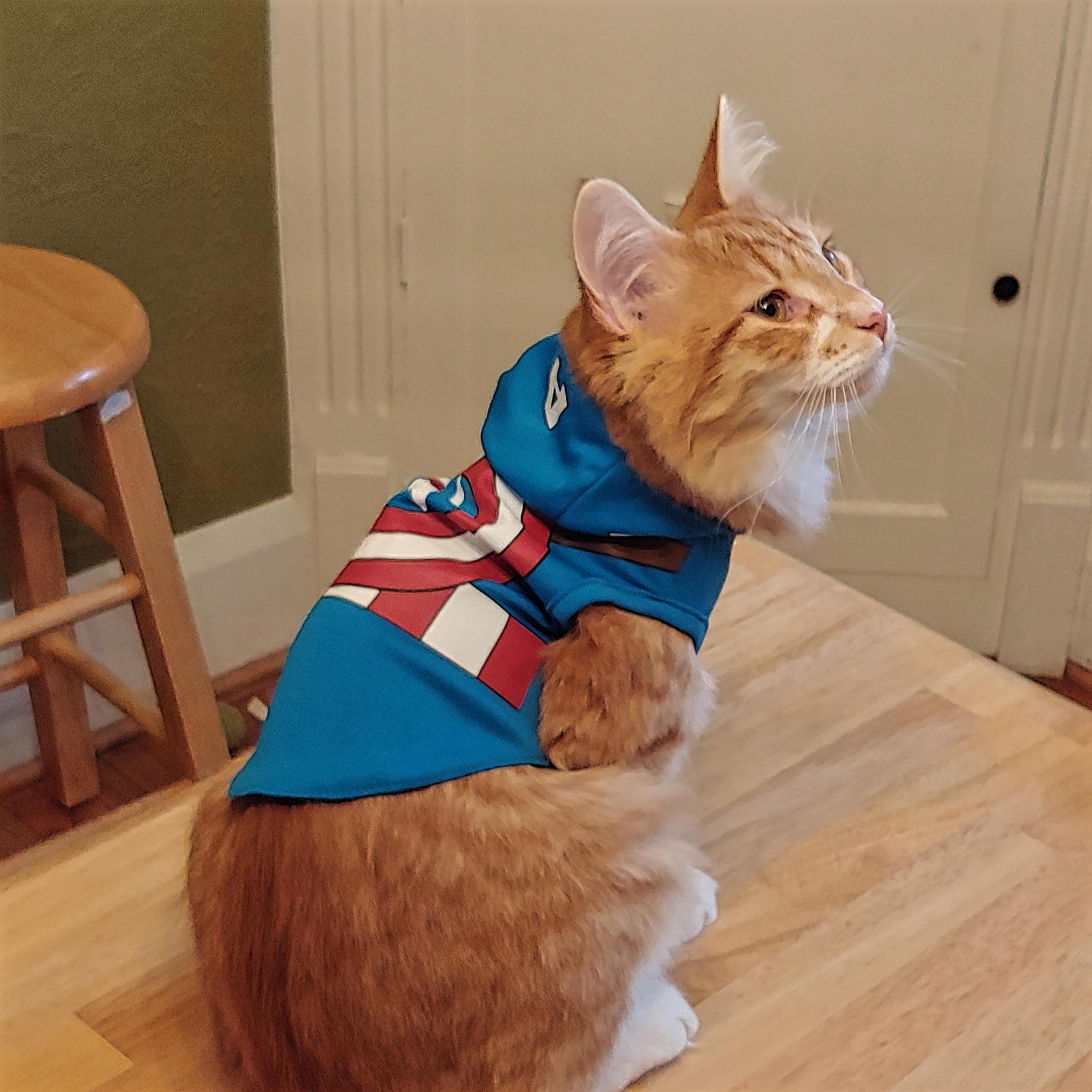 #8 Peter Parker Super Soldier