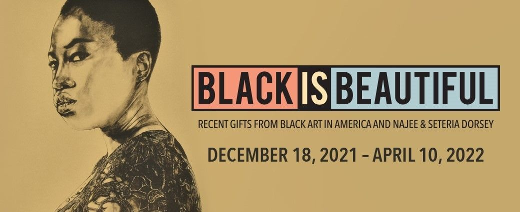 Black Is Beautiful: Recent Gifts from Black Art In America and Najee & Seteria Dorsey