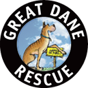 Great Dane Rescue
