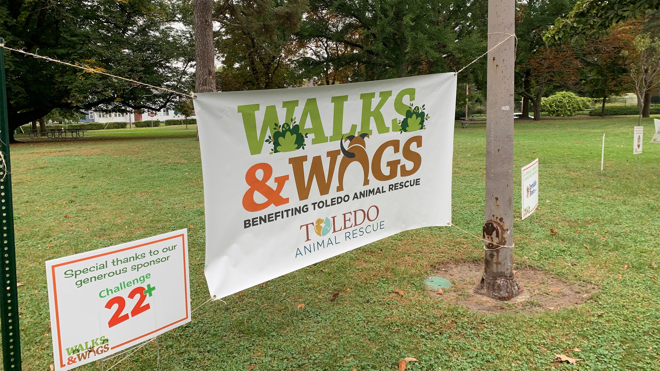 Walks & Wags Virtual Event
