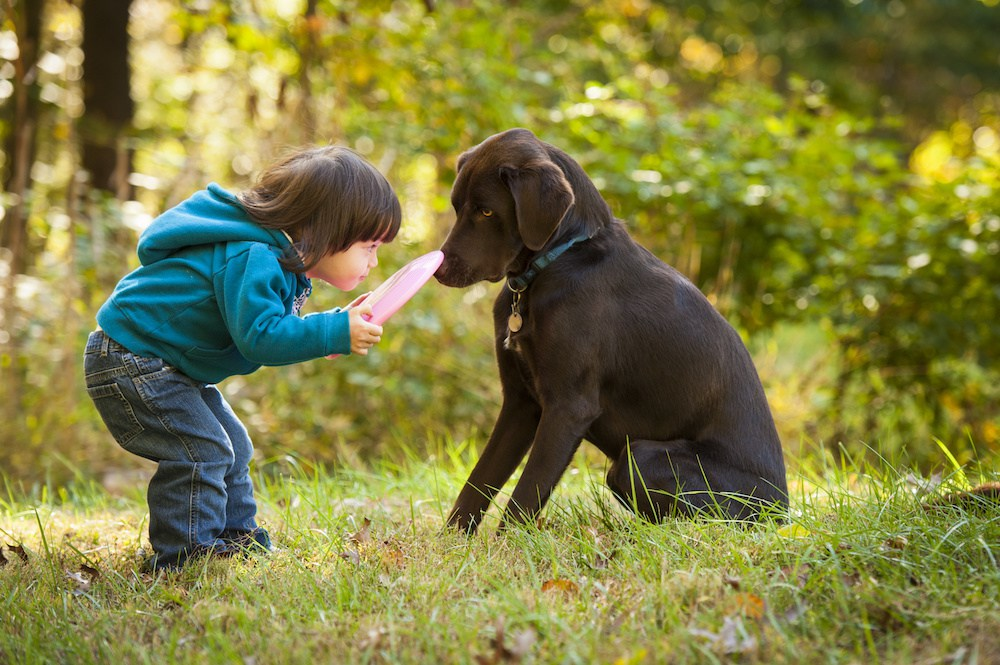 4 AGGRESSIVE CANCERS THAT AFFECT KIDS & DOGS: HOW WE CAN END CANCER AT BOTH ENDS OF THE LEASH
