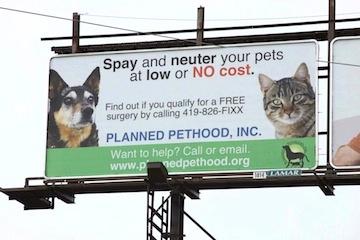 Billboard picture