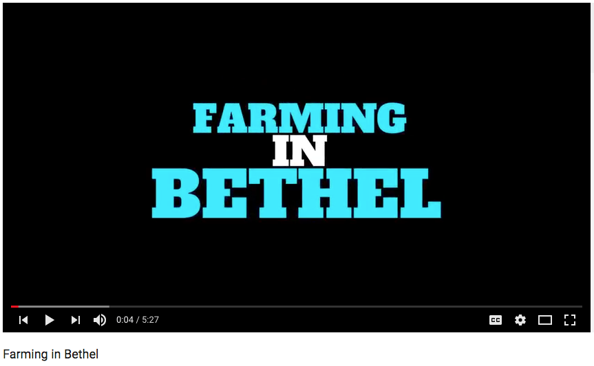 Farming in Bethel