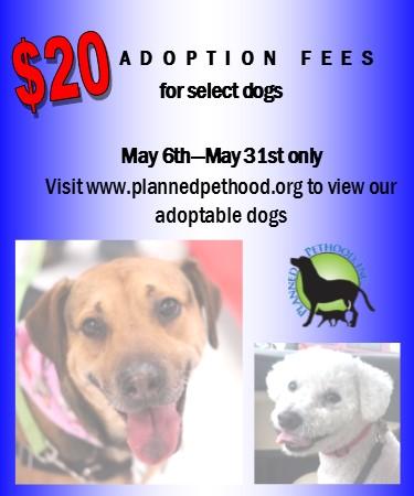 $20 Dog Adoption Promo