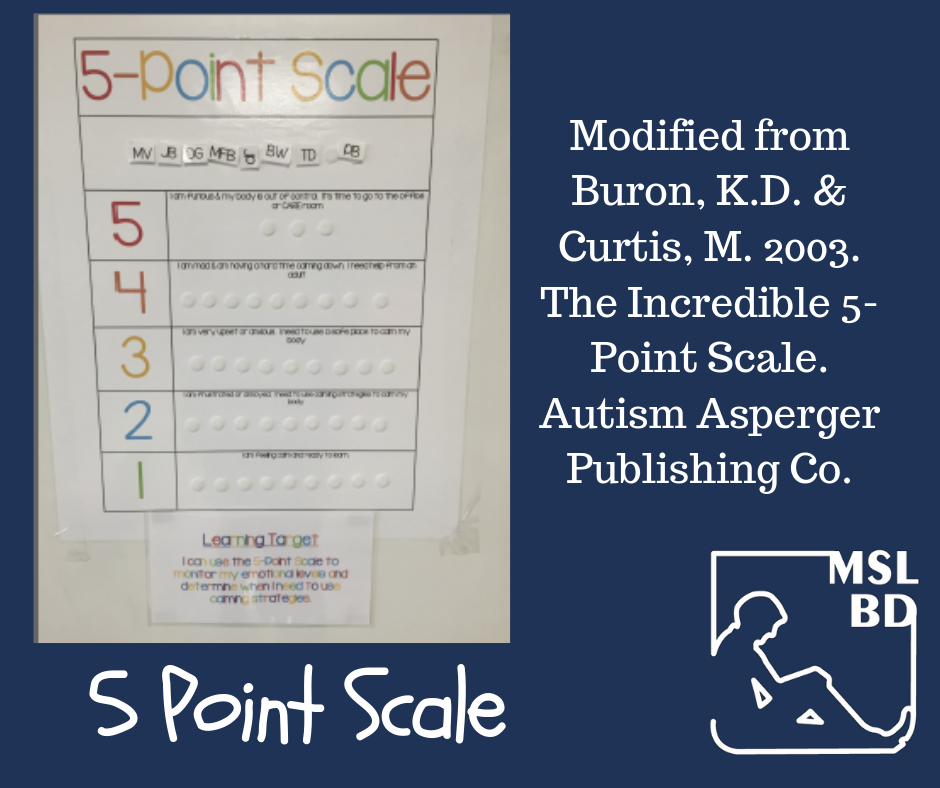 5-Point Scale