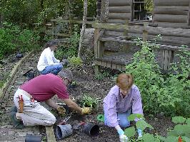 Gardening Volunteers