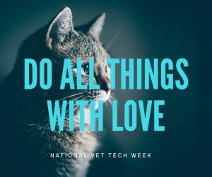 National Vet Tech Week : Meet Nikole