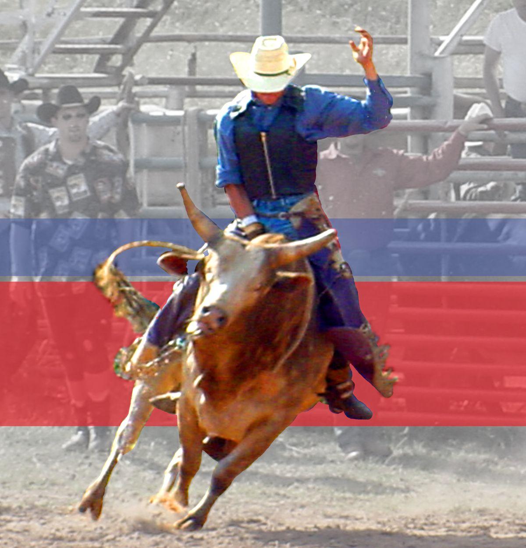 Nocona Bull Fest