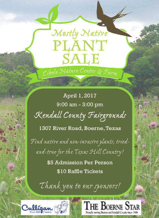 at Fairgrounds: CNC&F's Mostly Native Annual Plant Sale