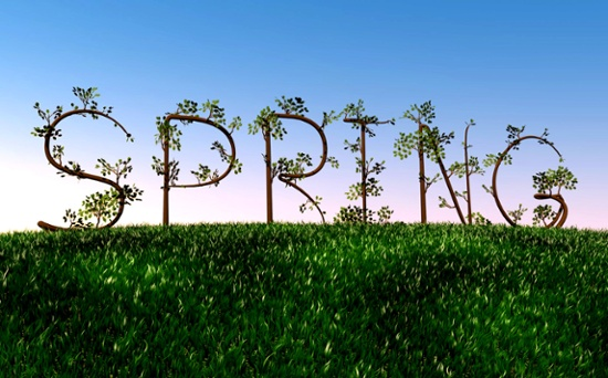Spring has Sprung - Refresh Your Business Image