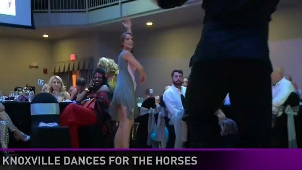WBIR Reporter Rachel Wittel takes part in Horse Haven's Dancing for the Horses