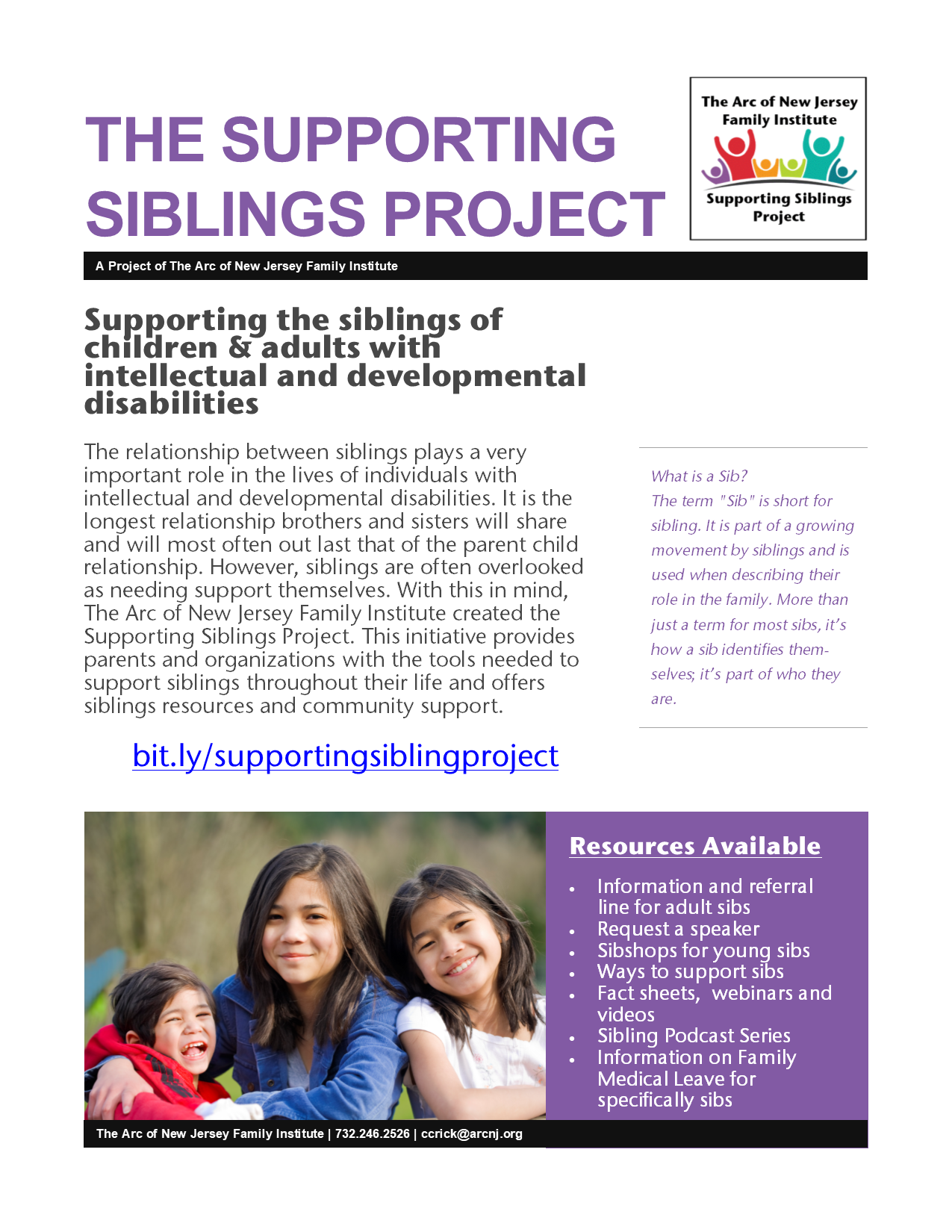 Supporting Siblings Project Flyer